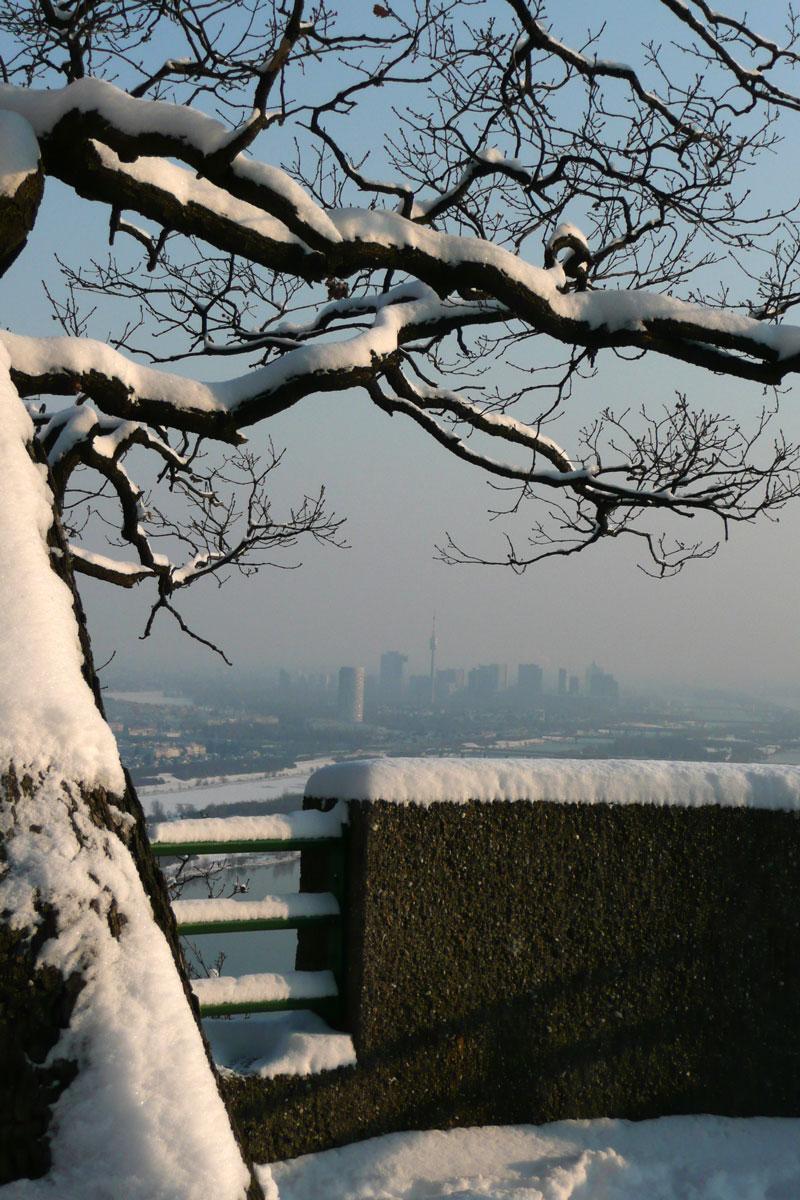 Nasenweg / Blick über Donau und Uno-City